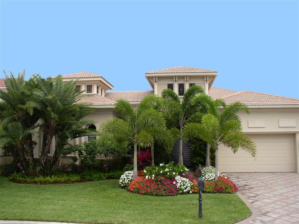 Grand Palm